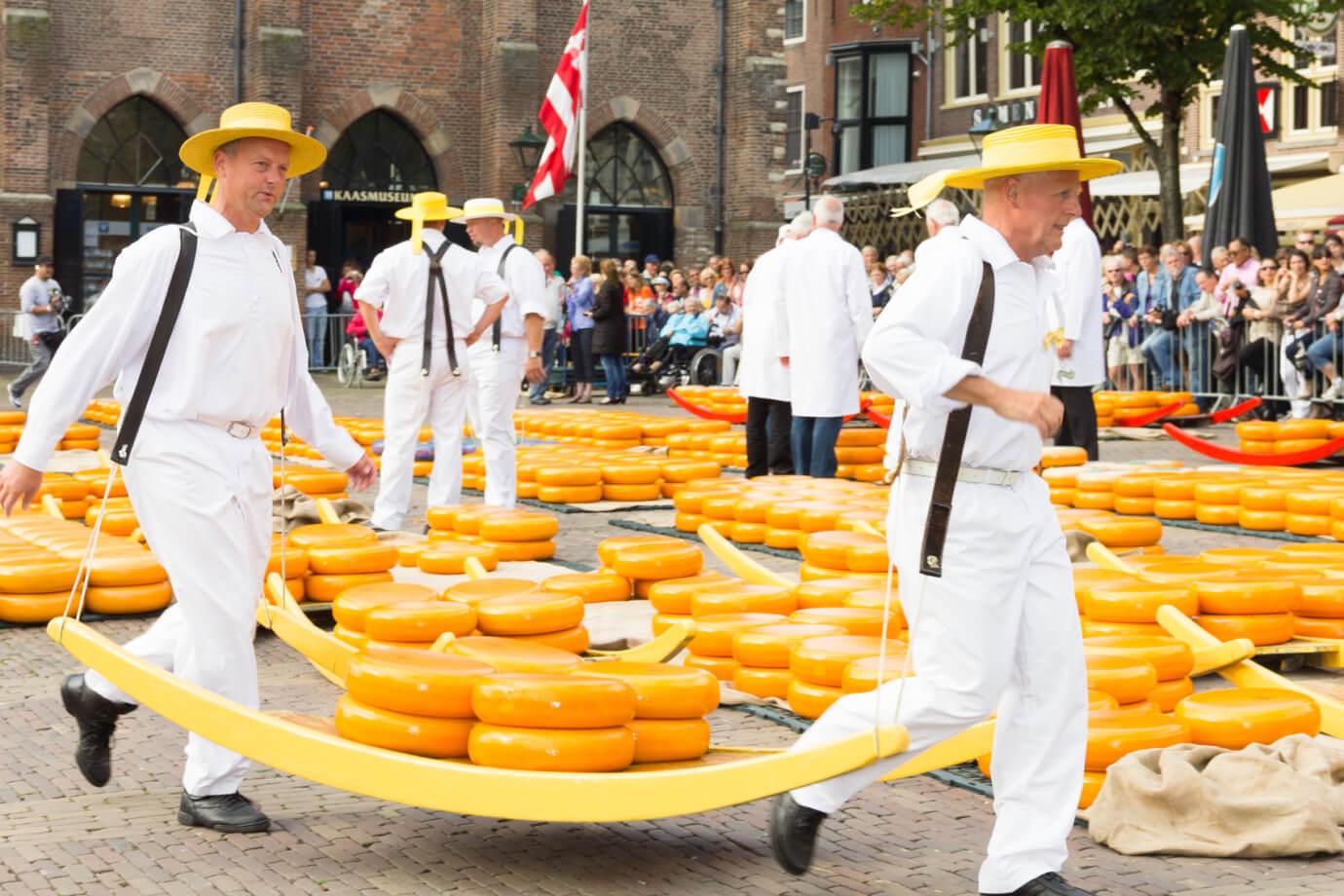 Dutch cheese   Discover Holland